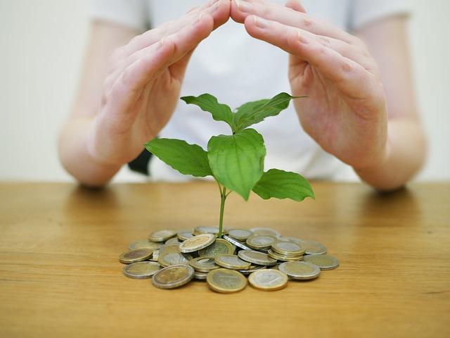 Schützende Hände über Pflanze in Kleingeld